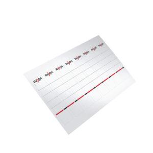 REXEL PRINTABLE CARD SPINE LABEL 80PK
